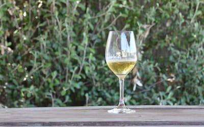2016 Stratum Riesling – Review